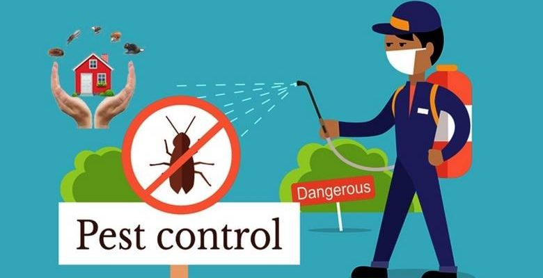 Do's and Don'ts of Choosing the Right Pest Control Service