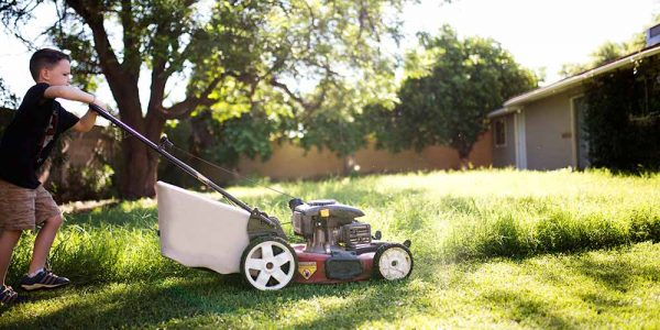 3 Landscaping Chores To Give Your Kids Or Teens
